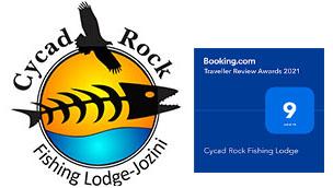 Cycad Rock